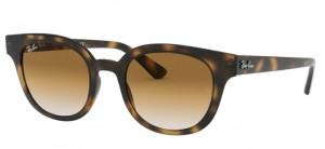 Okulary RAY BAN Havana/Brown RB4324 710/51