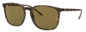 Okulary RAY BAN 4387 Havana / Dark Brown ORB4387-710/73